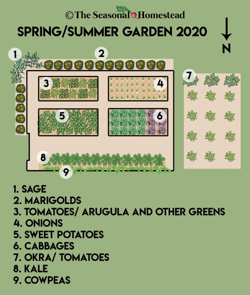 Getting Started With A Year Round Garden Part 2 Layout The